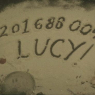 LUCY!