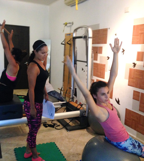 Flow in the Reformer 2014