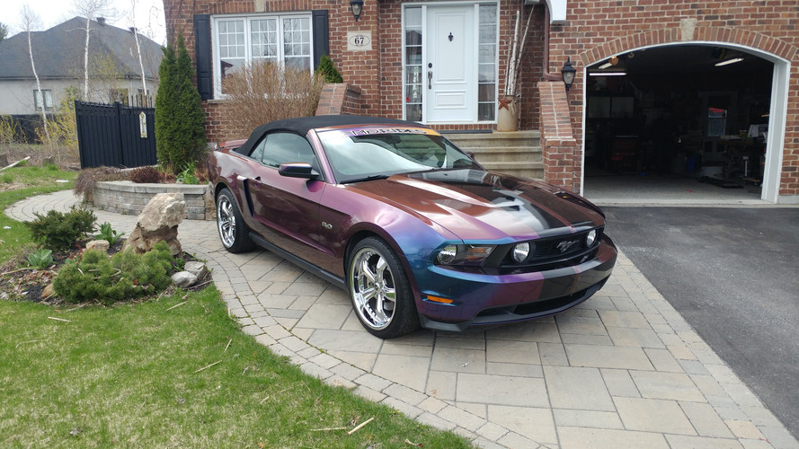 fully wrapped mustang with avery dennison