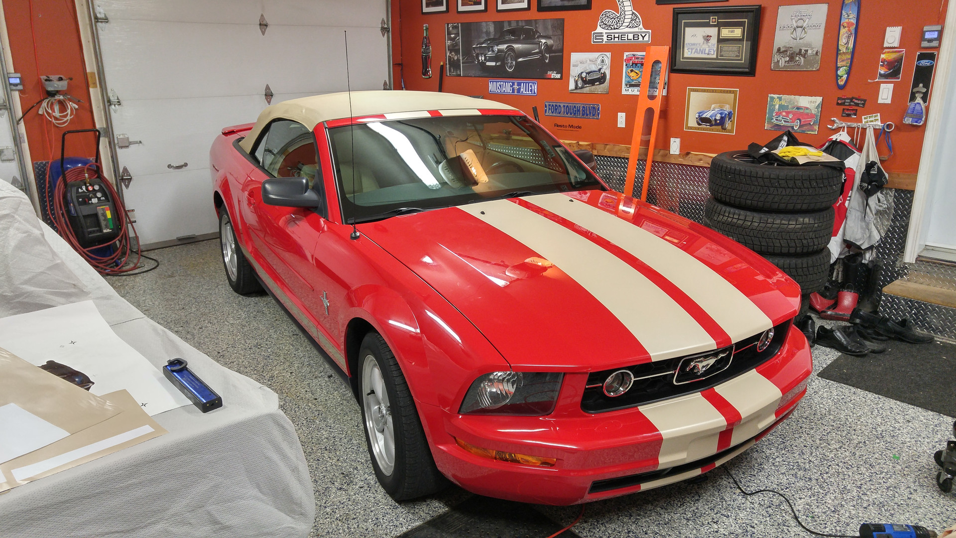 beige stripes on mustang