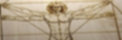LOGO-Vitruvian Man-Strip.PNG