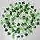 Thumbnail: Klimop slinger Beautiful Botanics