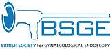 bsge wbg logo.jpg