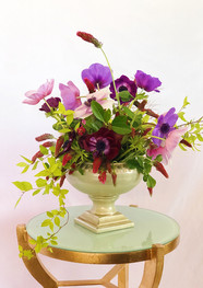 Purple and Violet Anemones.JPG