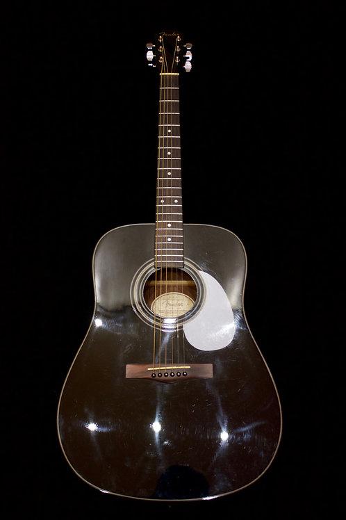 Fender DG-11