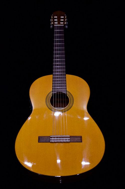 Yamaha CGX 102