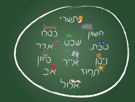 חוקיות ואחוזים בלוח השנה העברי