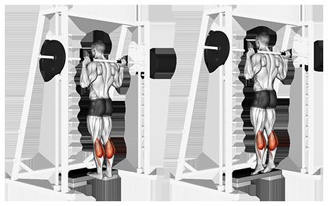 Smith Machine Standing Calf Raise Nasıl Yapılır?