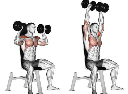 Dumbbell Shoulder Press Nasıl Yapılır?