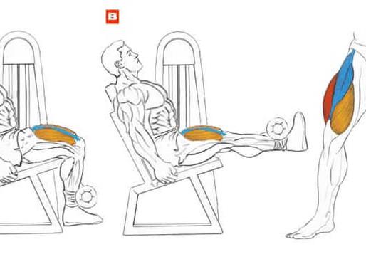 Leg Extension Nasıl Yapılır?