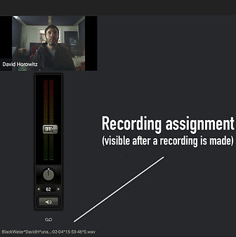 recording_assignment_section.jpg