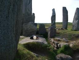 Crystal Skulls visiting Calanais Standing Stones