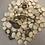 Thumbnail: Vegan Scallops Dried King Oyster Mushrooms