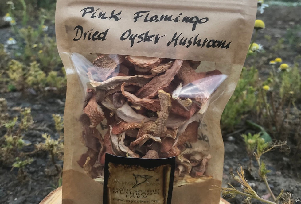 Pink Flamingo Oyster Dried Mushrooms 20g