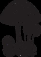 1shroom.png
