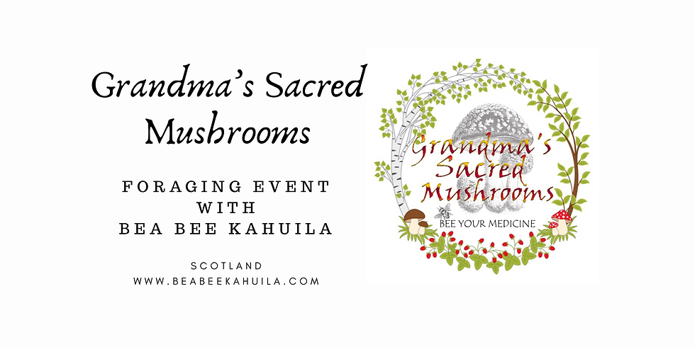 Mindful Foraging - Grandma's way to Healing & Well-being