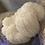 Thumbnail: Dried Lion's Mane Mushroom