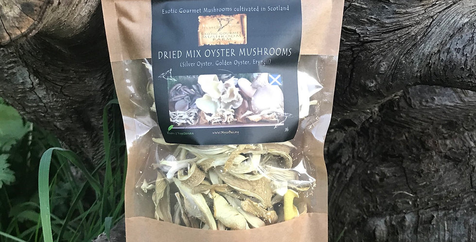 Wholesale Dried Gourmet Mix Oysters 20g