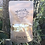 Thumbnail: Lion's Mane Dried Mushrooms 20g pouch