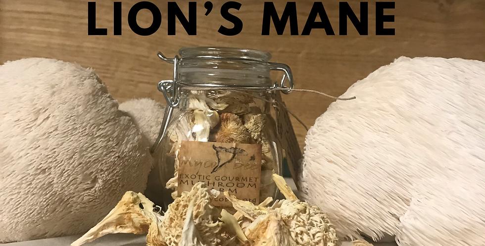 Dried Lion's Mane Mushroom