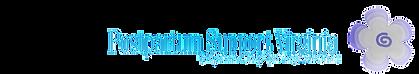 psv-logo-offcenter2.png