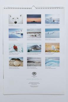 Wall calendar Arctic
