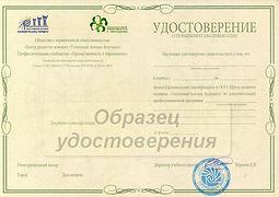 сертификат - скан (средний) - образец.jp