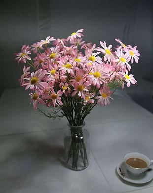 daisy 140 9n.jpg