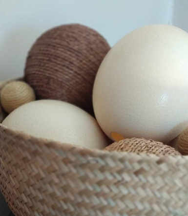 Plain Ostrich Egg - Basket with DecoBall