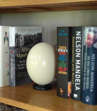 Plain Ostrich Egg  - Bookend.jpg