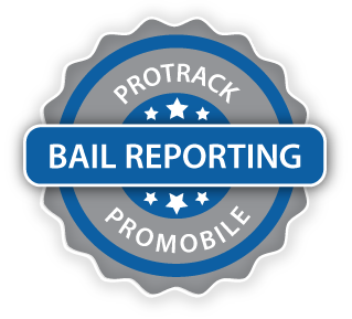 Bail Reporting Fee Potter County