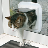 Installation of Cat Flaps in South Bucks