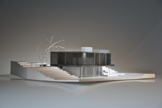 INDIVIDUALAUS NAMO projektas / INDIVIDUAL HOUSE project