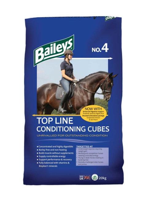 Baileys No.4 Conditioning Cubes