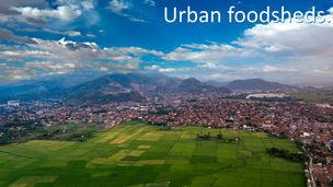 Button urban foodsheds.jpg