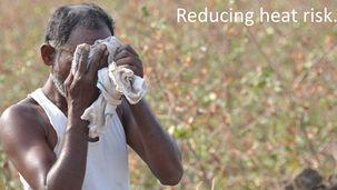 Heat stress India