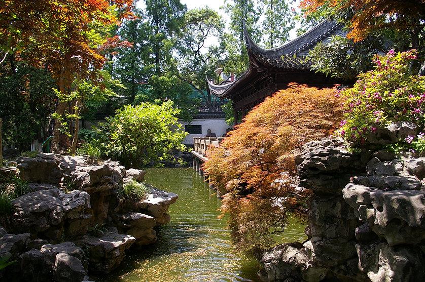 20090510_Shanghai_Yuyan_6689.jpg