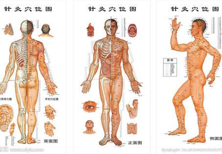 O Meridiano do Corpo Humano