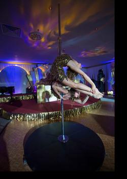 vineyard_hotel_acrobat.jpg