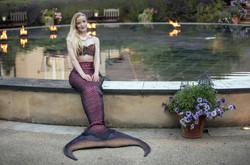 mermaid_hotel.jpg