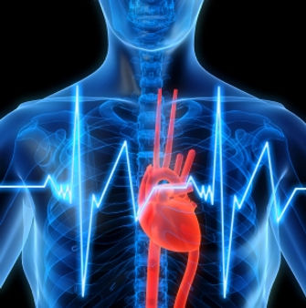 biofeedbackheart energy - Copy.jpg