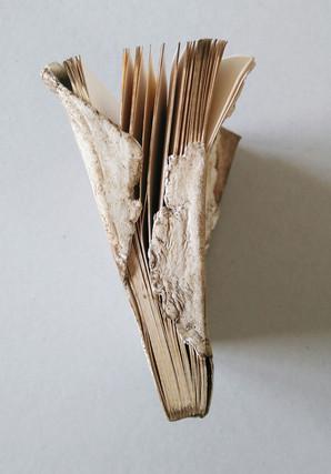 LivreMoon5.jpg