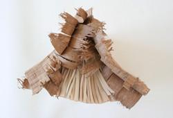 livre_wood_dessus