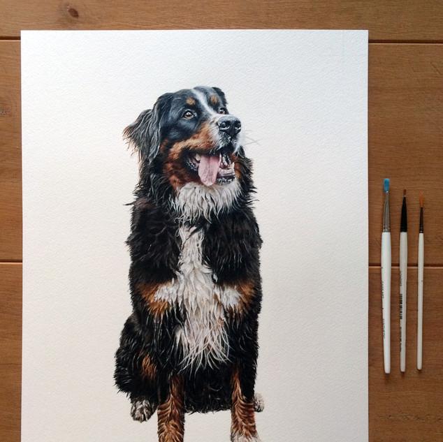 Portrait Complete