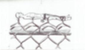 Fences2.jpg