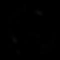 WGW Logo_edited.png