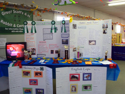 4-H Rabbit Club Table