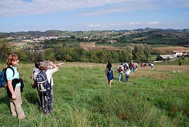 """Greenways Astigiane"", a network of country roads among forests and hills. ""Via Francigena"" a stretch of the pilgrimage from North Europe to Rome. Country road maps, tourist guides in different languages. Hiking backpacks and flasks. Guided excursions"