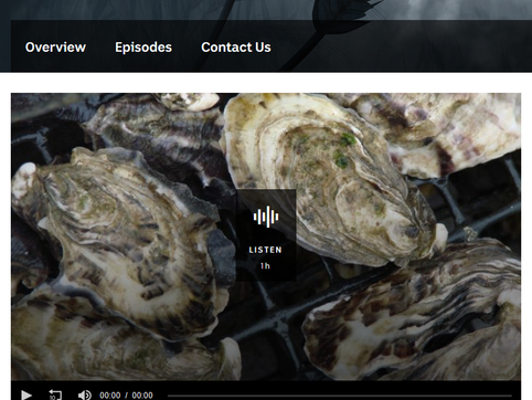 Marine scientists turning their attention to meat and shell quality of Tasmanian oysters