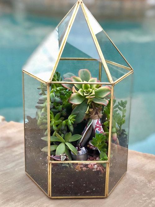 Custom Succulent Arrangement